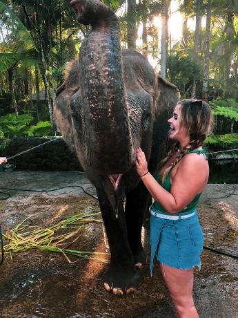 Bali elephants